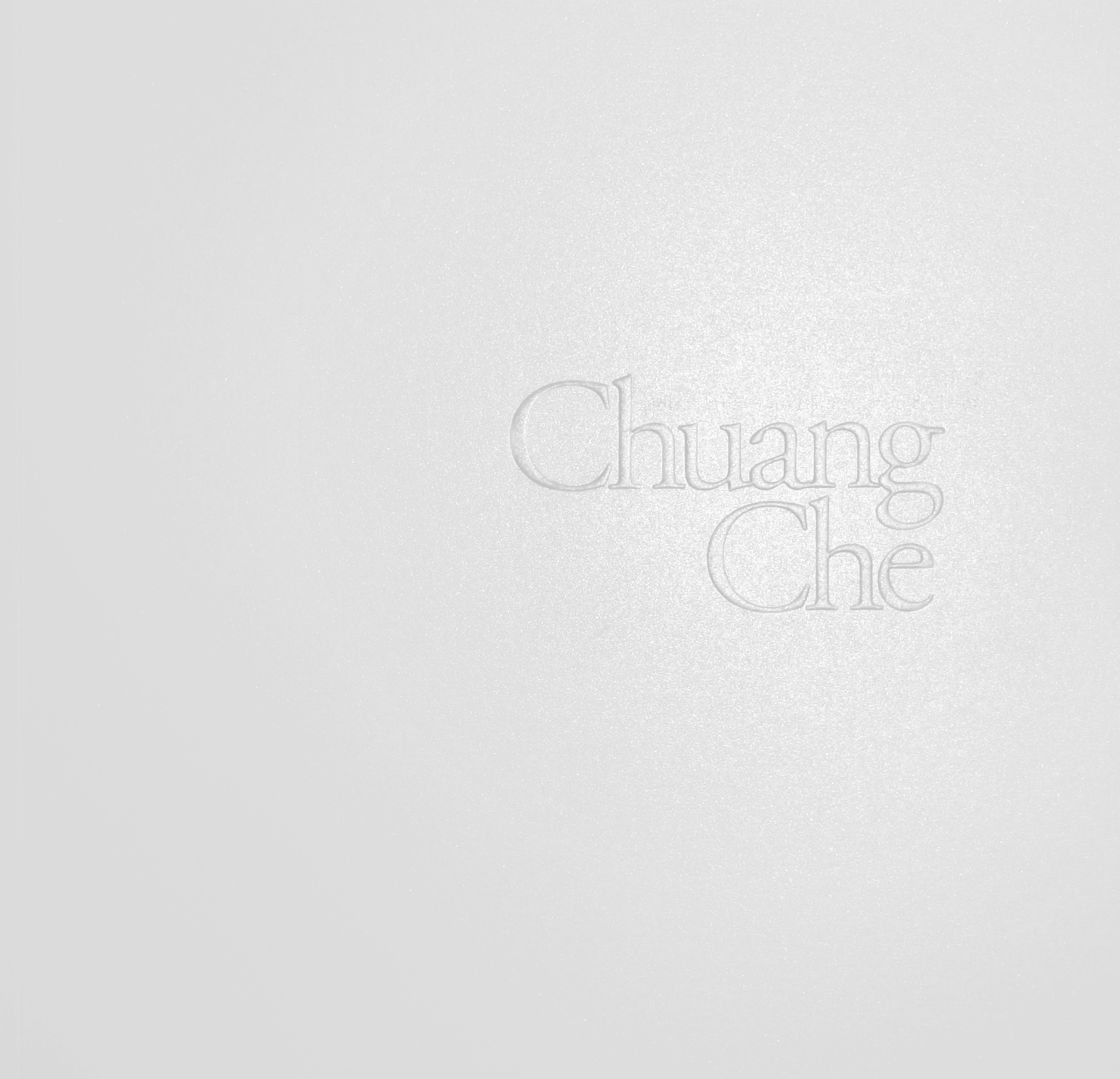 2012_2_Chuang Che Holistic View and Microscopic Vision_